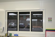 insect screens blinds